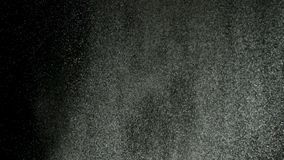 Chapoteo del polvo blanco aislado en fondo negro Cantidad com?n Ci?rrese para arriba para la nieve abstracta blanca que es lanzad metrajes