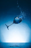 Chapoteo del vidrio y del agua Imagen de archivo libre de regalías