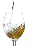 Chapoteo en vino Imagen de archivo libre de regalías
