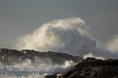 Chapoteo grande de la onda Fotos de archivo