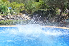 Chapoteo grande del agua Fotografía de archivo