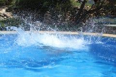 Chapoteo grande del agua Imágenes de archivo libres de regalías