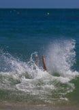 Chapoteo que se zambulle en el mar Fotos de archivo