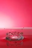 Chapoteo rojo Imagen de archivo