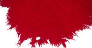 Chapoteo rojo abstracto de la salpicadura de la acuarela de la tinta de la sangre en el fondo blanco, el horror peligroso o la at stock de ilustración