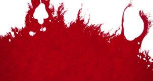 Chapoteo rojo abstracto de la salpicadura de la acuarela de la tinta de la sangre en el fondo blanco, el horror peligroso o la at ilustración del vector