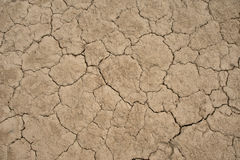 Chapped ground Stock Images