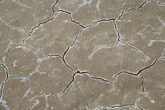 Chapped salted ground Stock Images
