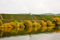 Chappel at the vineyard near Trittenheim at the river Royalty Free Stock Photos