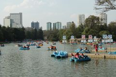 Free Chapultepec Park. Stock Photography - 99635782