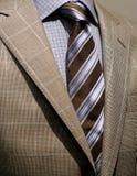 Chaqueta checkered gris clara, camisa azul y lazo Foto de archivo