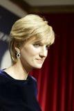 Chaqueta de punto de Diana frances Fotos de archivo