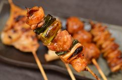 Char-broiled chicken yakitori Royalty Free Stock Images