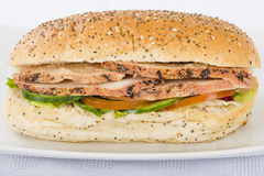 Char-grill Chicken Sandwich. Char-grill chicken breast slices, honey mustard mayonnaise, tomato, cucumber and lettuce in a white bun with sesame seeds royalty free stock photography