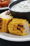 Char grilled corn on the cob. Fresh char grilled corn on the cob with yogurt dip stock photography