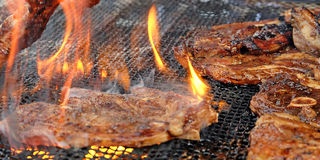 Char-grilled lamb chops Royalty Free Stock Image