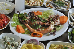 Char grilled octopus. Char grilled greek style cooked octopus and some different snacks served with ouzo royalty free stock image