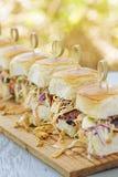 Char Siu Chicken Sliders. Char siu chicken, slaw and dressing on Hawaiian sweet slider buns Royalty Free Stock Image
