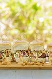 Char Siu Chicken Sliders. Char siu chicken, slaw and dressing on Hawaiian sweet slider buns Stock Photos