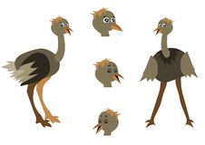 Character animation ostrich, vector illustration vector illustration