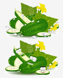 Character cucumber vegetable Royalty Free Stock Photography