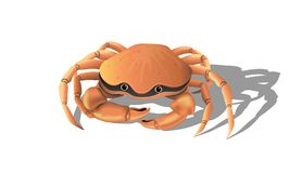 Friendly crab on white background vector illustration