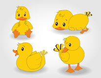 Character duck set Stock Images