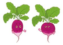 Character radish Royalty Free Stock Images