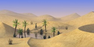 Character on sand desert - walk to oasis Stock Photography