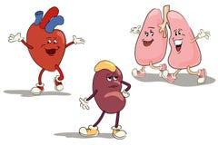 Character set internal organs 1. Cartoon characters of human internal organs Stock Photo