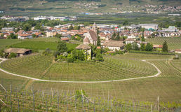 Characteristic circular vineyard in the South Tyrol, Egna, Bolzano, Italy on the wine road. Royalty Free Stock Image