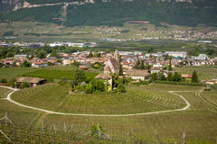 Characteristic circular vineyard in the South Tyrol, Egna, Bolzano, Italy on the wine road. Royalty Free Stock Photos