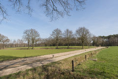 Characteristic half-open farmlands in the Netherlands Royalty Free Stock Images