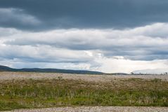 The characteristic landscape of the Arctic tundra in summer, Finnmark, Stock Photo