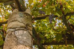 A characteristic pylon stone and lime of the vineyards of the famous Piedmontese wine Nebbiolo Carema D.O.C Italy Royalty Free Stock Image