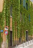 Characteristic street in Rome. Characteristic street with ivey-covered wall in Rome, Italy Royalty Free Stock Photos