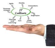 Characteristics of IT Culture. Man presenting Characteristics of IT Culture royalty free stock photos