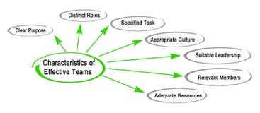 Characteristics of Effective Teams. Seven Characteristics of Effective Teams royalty free illustration