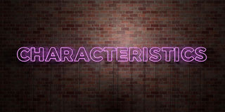 CHARACTERISTICS - fluorescent Neon tube Sign on brickwork - Front view - 3D rendered royalty free stock picture Stock Photos
