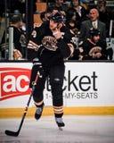 Charagne de Zdeno, Boston Bruins Photo stock