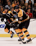 Charagne de Zdeno de défenseur de Boston Bruins Images stock