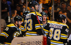 Charagne de Zdeno de défenseur de Boston Bruins Photo libre de droits