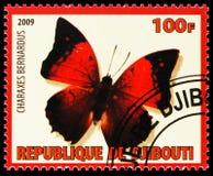 Charaxes Bernardus, serie degli insetti, circa 2009 illustrazione vettoriale