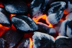 charbon Image libre de droits