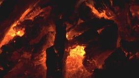 Charbon brûlant en gros plan dans un feu camper Durée rurale banque de vidéos