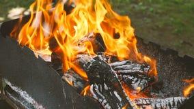 Charbon brûlant Mouvement lent Belle flamme du feu clips vidéos