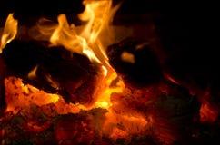Charbon d'un rouge ardent du feu en bois Photos stock