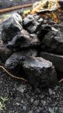 Charbon dans la terre Photo stock
