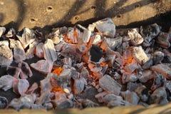 Charbon de bois brûlé Photographie stock