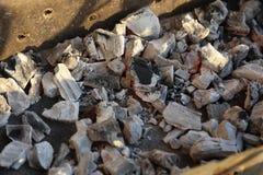 Charbon de bois brûlé Images libres de droits